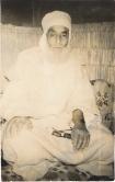 SidiAlHaj